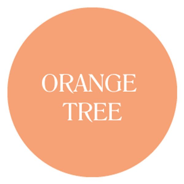 orange tree chalk based garden furniture paint
