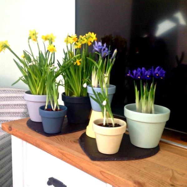 shabby chic plant pots